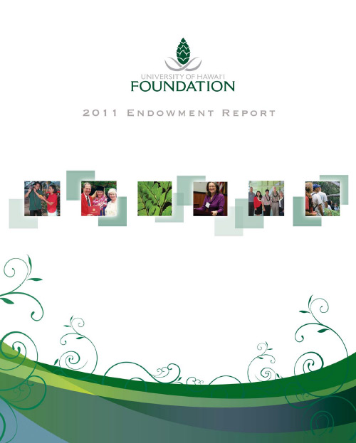 Endowment Report 2011 cover