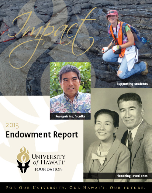 Endowment Report 2013 cover
