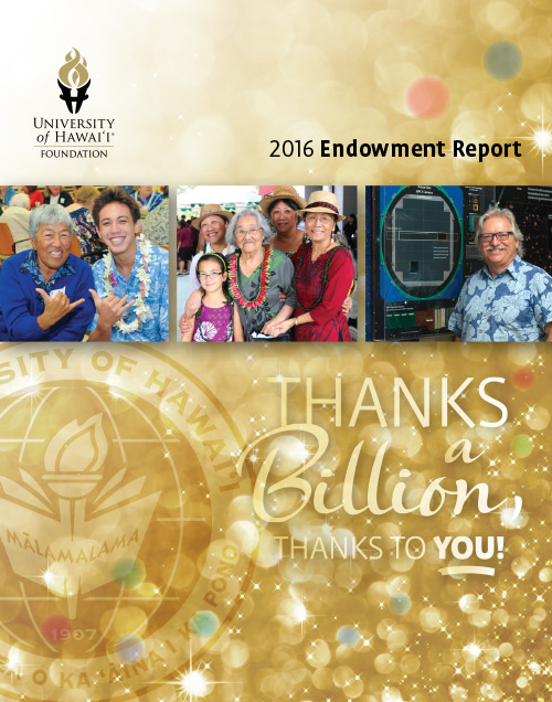 Endowment Report 2016