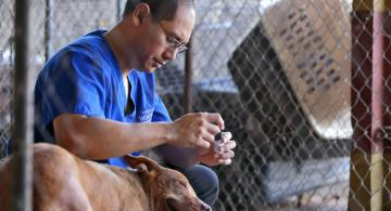 VETERINARY TECHNOLOGY FUND