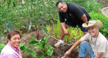 Preserve and Enhance the Maui Cooperative Extension Gardens