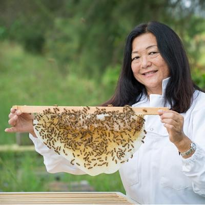 Shigekunis Create a Buzz